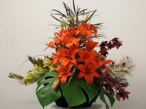 Orange Dream Arrangement