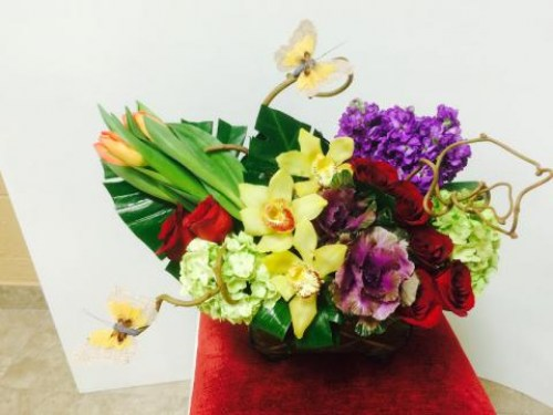 Light of Life Arrangement