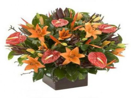 Jolly Orange Arrangement